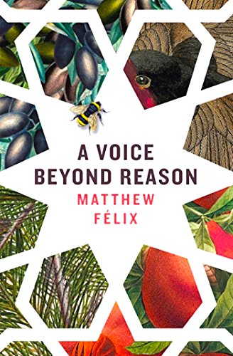 A Voice Beyond Reason: A Coming of Age Novel about Intuition