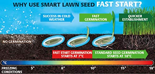 How to Sow Grass Seed