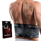Venom Lumbar Back Brace Compression Belt - Elastic Support & Adjustable Dual Straps, Lower Back Pain, Spasm, Strain, Herniated Disc, Sciatica, Scoliosis, Disc Bulge, Lifting, Men, Women (Large)