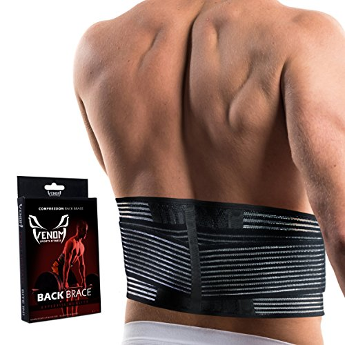 Venom Lumbar Back Brace Compression Belt - Elastic Support & Adjustable Dual Straps, Lower Back Pain, Spasm, Strain, Herniated Disc, Sciatica, Scoliosis, Disc Bulge, Lifting, Men, Women (Small)