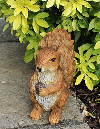 HH Home Hut Red Squirrel Garden Ornament Indoor and Outdoor Sculpture Fairy Gardens