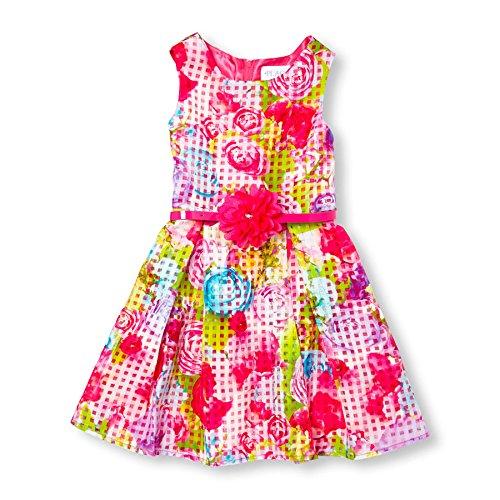 The Children's Place Little Girls' Sleeveless Dressy Dresses, Pink 5974, 12