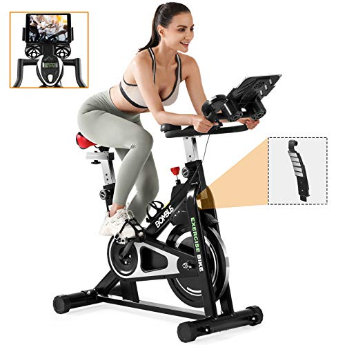 Exercise Bikes Stationary-Indoor Professional Magnetic Resistance Exercise Cycling Bikes with Heavy 38 LB Chrome Flywheel,Comfortable Seat and Handlebar for Home Cardio Workout Bike Training