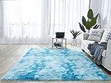Quanhao alfombra de felpa, alfombra mullida, alfombra antideslizante para el hogar, felpudo cuadrado, adecuado para la decoración de salas de estar y dormitorios (azul, 80 x 120 cm)