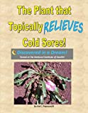 The Plant that Topically Relieves Cold Sores!