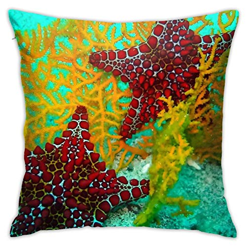 Cup Off Throw Pillow Cover Tour and Travel Santo Domingo Fun
