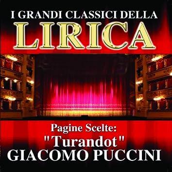 Giacomo Puccini : Turandot, Pagine scelte (I grandi classici della Lirica)