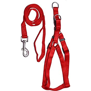 "PETHUB Quality Product P.P Harness/Leash 1/2"" INCHES RED"