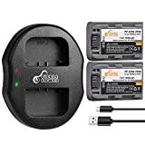 NP-FP50 NP-FP51 Pickle Power (x2) Batteries and Dual Slots USB Charger Compatible with Sony DVD HandyCam DCR-DVD105 DCR-DVD202E DCR-DVD92 DCR-SR100 DCR-HC18E Camcorders. (1050mAh, 7.2V)