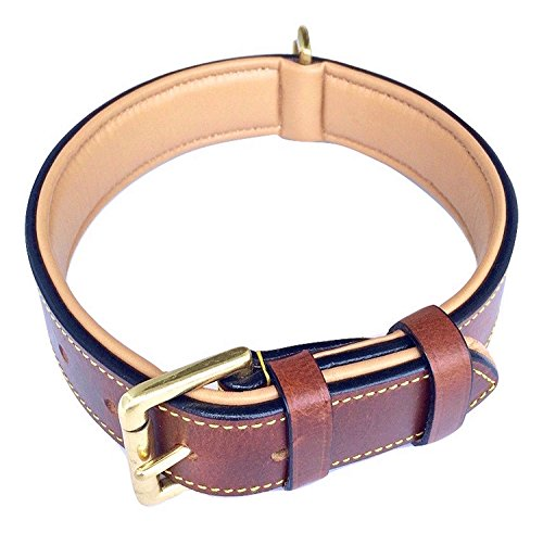 Soft Touch Collars Padded Leather Dog Collar, Large Brown - Genuine Real Leather, 24' Long x 1.5 Wide, Fits Neck Size 18' to 21' Inches