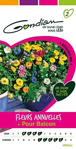 Gondian 165070 CP 2 Semences Fleurs Annuelles pour Balcon Multicolore 1 x 8,1 x 16 cm