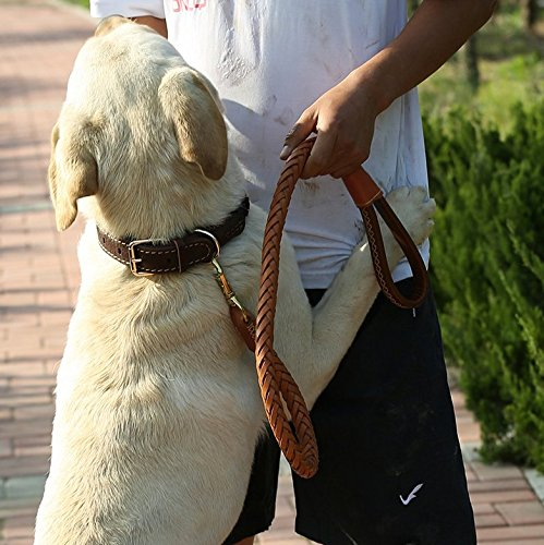 OCSOSO Genuine Leather Braided Dogs Leash