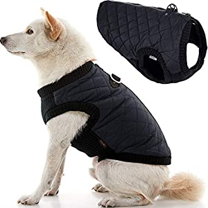 Gooby Fashion Dog Vest – Small Dog Sweater Bomber Dog Jacket Coat with D Ring Leash and Zipper Closure – Dog Clothes for Small Dogs Girl or Boy for Indoor and Outdoor Use