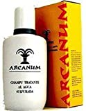Arcanum Champú Tratante 200 ml de Averroes