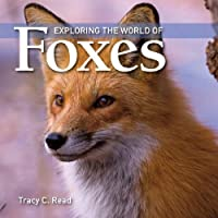 Exploring the World of Foxes by Tracy Read(2010-03-12)