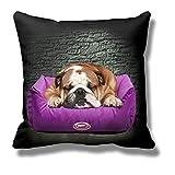 youtex englische Bulldogge Kissen (rosa für Weibchen)