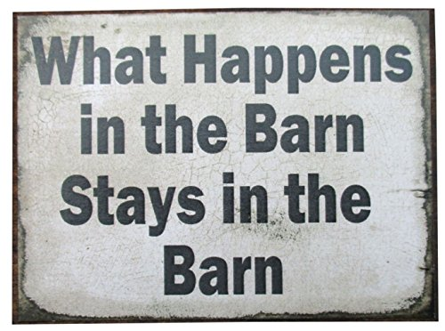 Farmisms 4x3 Inspirational Wooden Rustic Country Signs for Country Farm Living -What Happens in The Barn Stays in The Barn