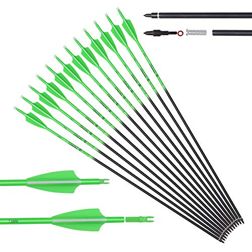 Carbon Arrows 28 Inch Targeting Practice Hunting Arrow Fluorescence Color for Compound Bow and Recurve Bow with 100 Grain Removable Tips (Pack of 12)