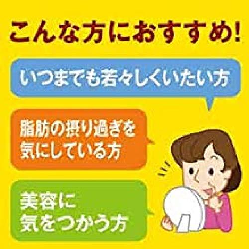 大塚製薬ネイチャーメイドE400100粒