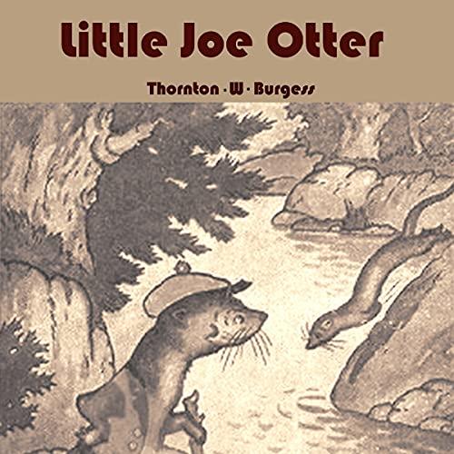 Little Joe Otter cover art