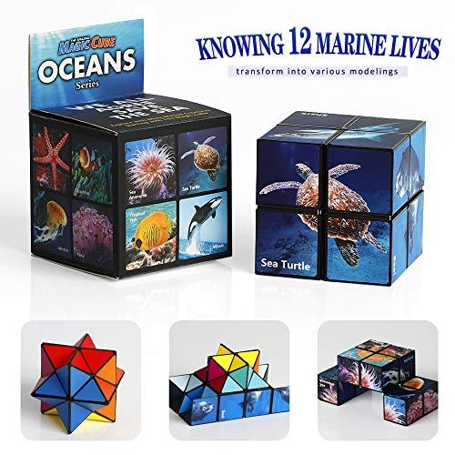 Magic Star Cube Infinite 3D Cube Puzzles para adultos Fiesta Viajes Descompresión creativa Cubo mágico Puzzle Toy (Serie Océano)