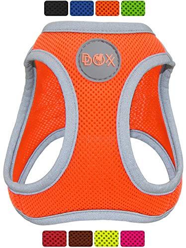 DDOXX Brustgeschirr Air Mesh, Step-In, reflektierend, verstellbar, gepolstert | viele Farben & Größen | für kleine & mittlere Hunde | Hunde-Geschirr Hund Katze Welpe | Katzen-Geschirr | Orange, M