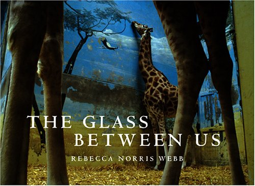 Price comparison product image The Glass Between Us: Reflections Of Urban Creatures