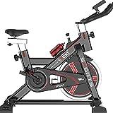 WYZXR Portabiciclette stazionario per Cyclette Interna reclinabile Bici Excersize con Manubrio e Sedile Regolabili, A