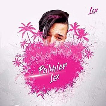 Palmier Lex