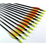 12 Shiny Black 30' Fiberglass Target Practice Arrows