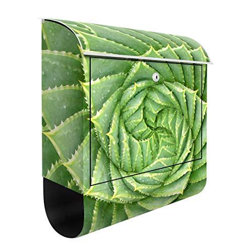 Bilderwelten Briefkasten mit Zeitungsrolle Spiral Aloe 46cm x 39cm