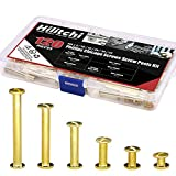 Hilitchi 60-Sets M5 x 5/10 / 15/25 / 35/45 Golden Phillips Chicago Screw Binding Screws Posts Assortment Kit for Scrapbook Photo Albums Binding and Leather Saddles Purses Belt Repair -
