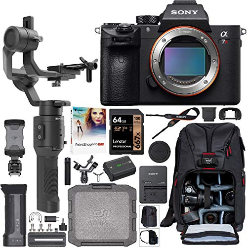Sony a7R III 42.4MP Full-Frame Mirrorless Interchangeable Lens Camera Body ILCE-7RM3 Filmmaker's Kit with DJI Ronin-SC 3-Axis Handheld Gimbal Stabilizer Bundle + Deco Photo Backpack + 64GB + Software