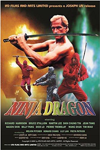 Ninja Dragon [DVD]: Amazon.es: Richard Harrison, Godfrey Ho ...