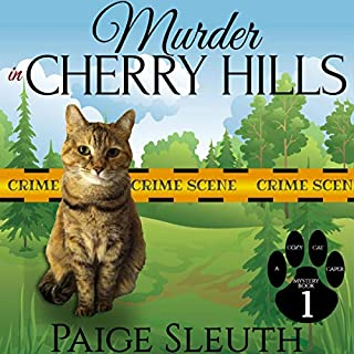 Murder in Cherry Hills audiobook cover art