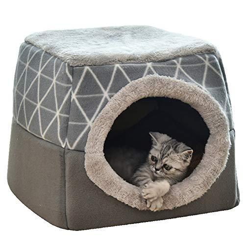 Gato del Invierno Y La Caseta De Perro Mascota Caliente Mate