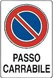 CARTELLO DIVIETO DI SOSTA - PASSO CARRABILE - IN PVC misure 30x20 cm.