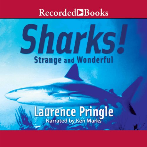 Sharks! Strange and Wonderful audiobook cover art