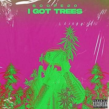 I Got the Trees