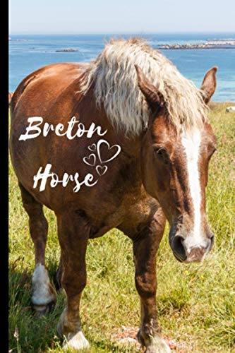 Breton Horse Notebook For Horse Lovers: Composition Notebook 6x9' Blank Lined Journal
