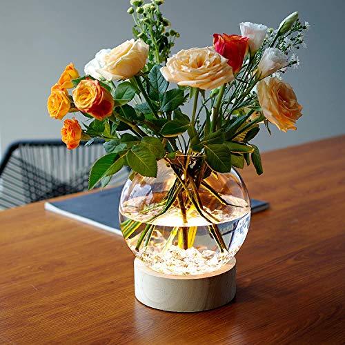 MJ PREMIER Vase, Beleuchtete Blumenvase aus Glas mit Led und Timer, Batteriebetriebene Glas Vase, Transparente Dekorative Blumenvase für Küche, Tisch, Zuhause, Büro,Hochzeit, Mutterstag Geschenk