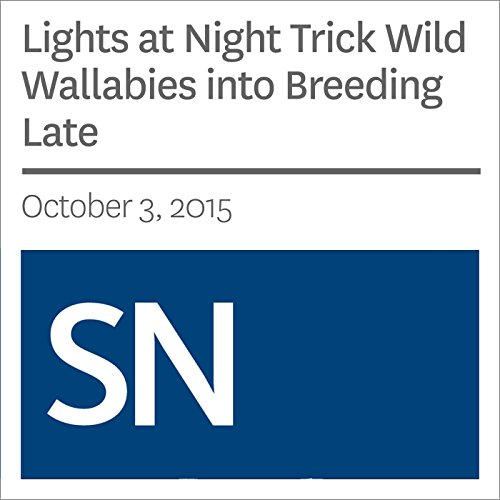 Lights at Night Trick Wild Wallabies into Breeding Late audiobook cover art