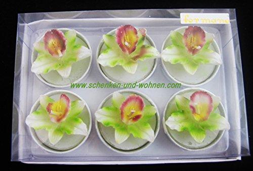 formano 6er Pack Deko Teelichter Orchideen weiß