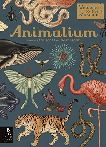 Animalium (Welcome To The Museum) (English Edition)