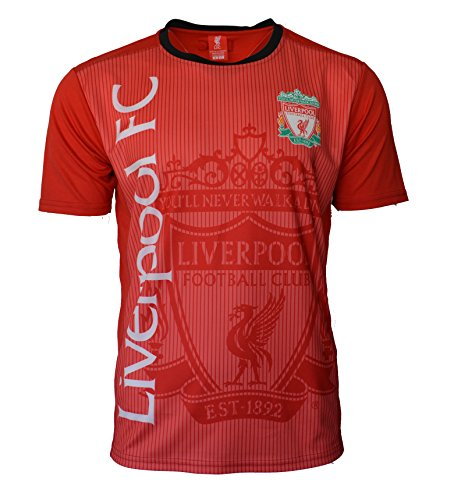 Liverpool Soccer Jersey Adult Training Custom Name and Number (XL, NO Name -RED H01)