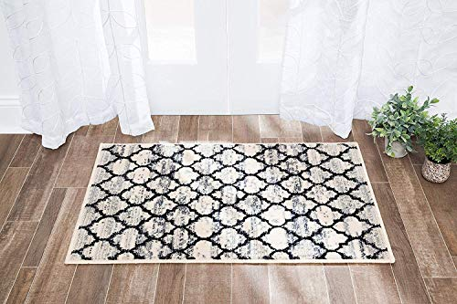 Anji Mountain Amb0917-0046 Area Rug 4 x 6-Feet Black and White