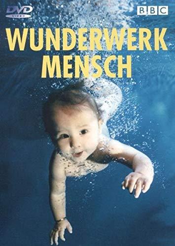 Schuber (4 DVDs)