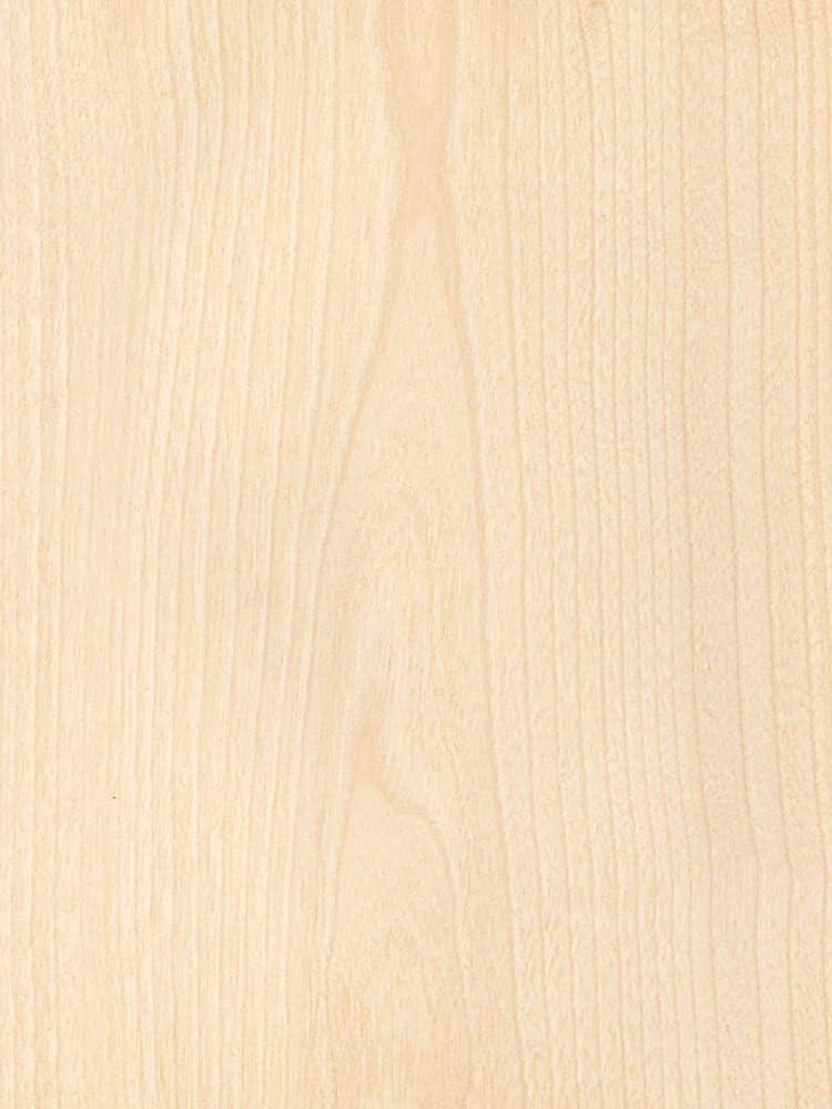 Wood Veneer Birch White Nashville-Davidson Mall Rotary 2 mil Backer 10 8 Bargain Paper x