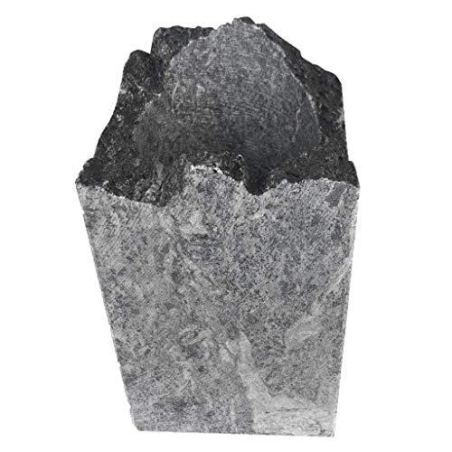 SudoreWell® Suomi Rocks Weinkühler und Sektkühler aus hochwertigem Speckstein
