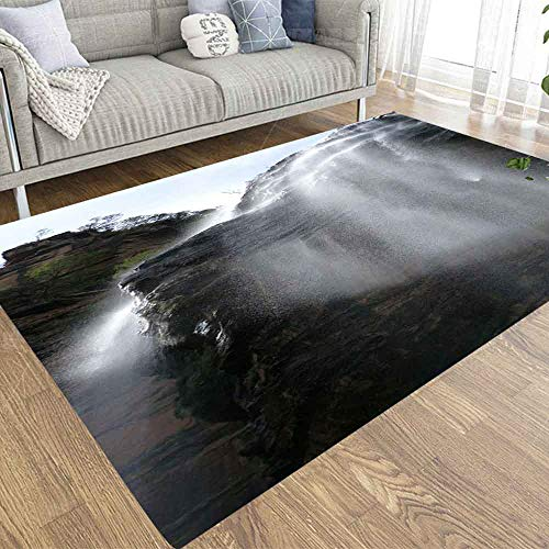 Capsceoll 2X3 Area Rugs Waterfall Australia Carpet Suitable for Children Pets for Home Living Room Indoor Décor